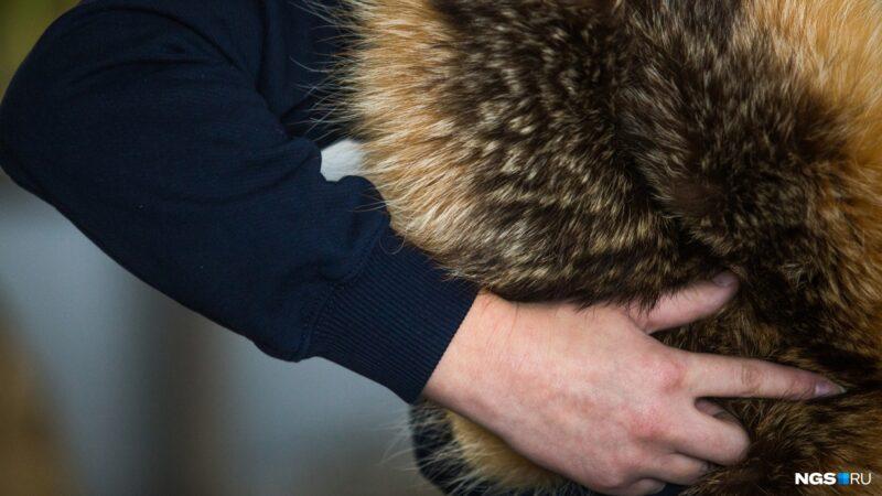 Житель Санкт-Петербурга украл шубу у жительницы Твери