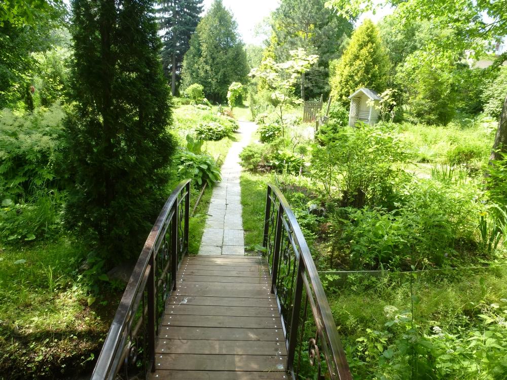 В ботаническом саду приготовили чай вечной молодости