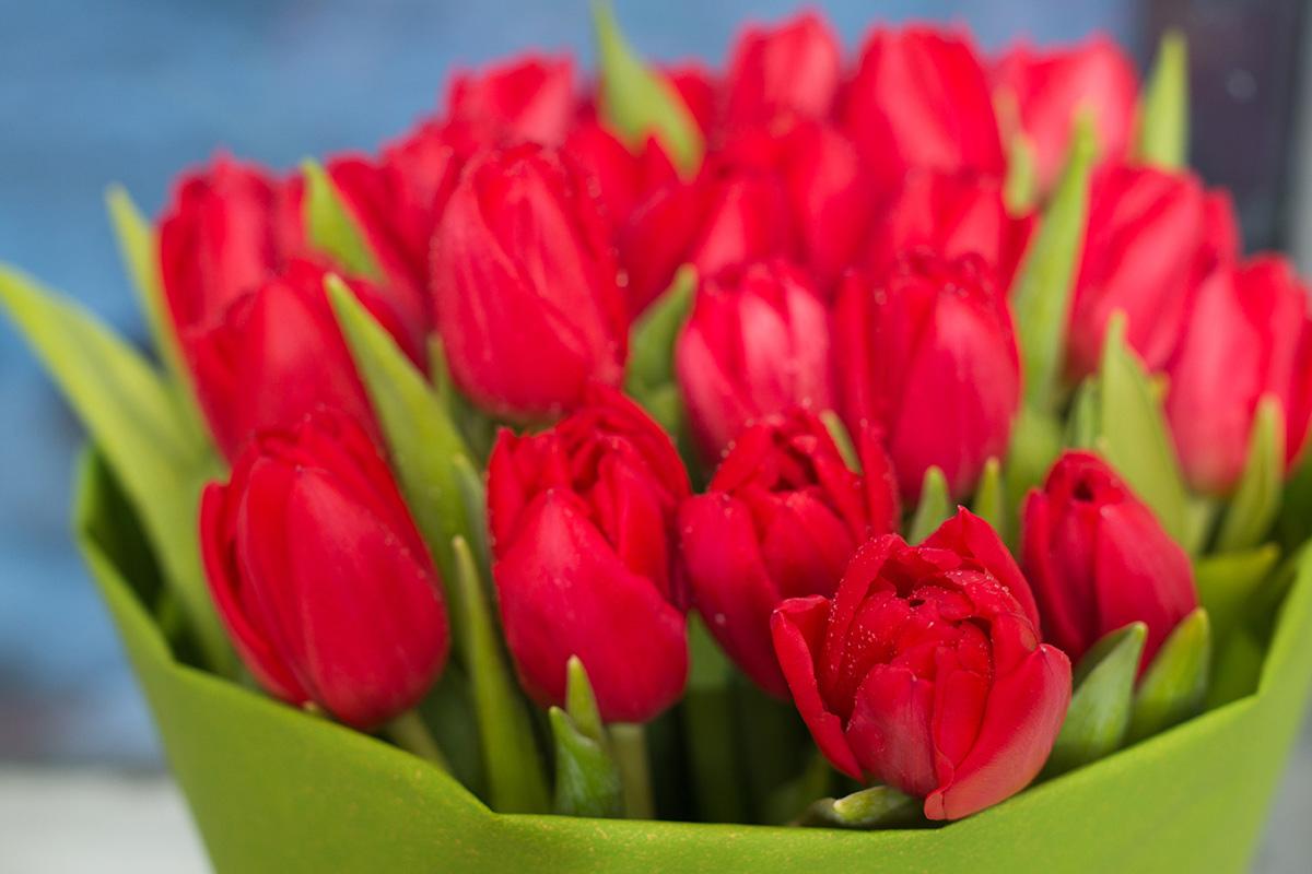 Руководители Ржевского района поздравили женщин с 8 Марта