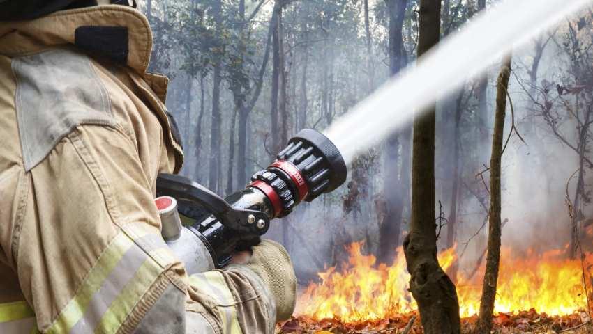 В Тверской области контролируется работа дорожных подрядчиков по обеспечению противопожарного режима
