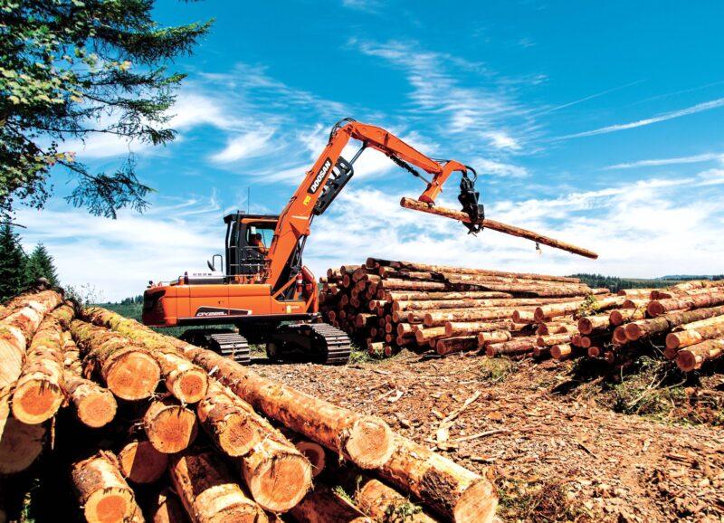 В Тверской области по инициативе Игоря Рудени введут новые меры поддержки лесопромышленной отрасли