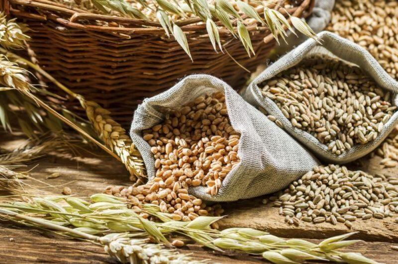 С начала года Управлением выявлено 18 случаев недостоверного декларирования зерна и продуктов его переработки