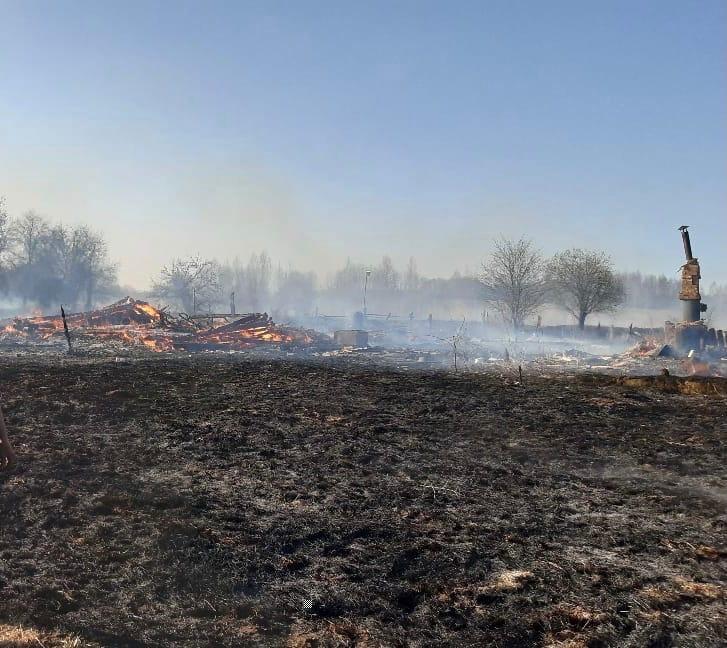 В Тверской области пожар уничтожил девять жилых домов