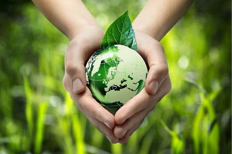 Новые идеалы: почему молодёжь сознательно относится к экологии