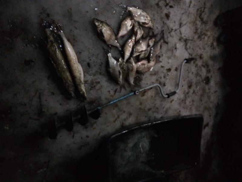 В Тверской области пресекли деятельность рыбного браконьера