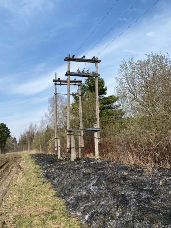 Под Тверью огонь с травы чуть не перекинулся на линию электропередач