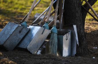 Весна с чистого листа: почему субботники остаются традицией