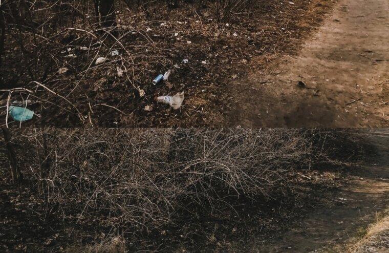 """В Твери волонтёры инициативной группы """"Чистоград"""" собрали 40 мешков мусора"""