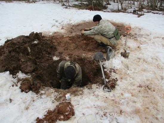Под Андреаполем поисковики нашли останки красноармейца