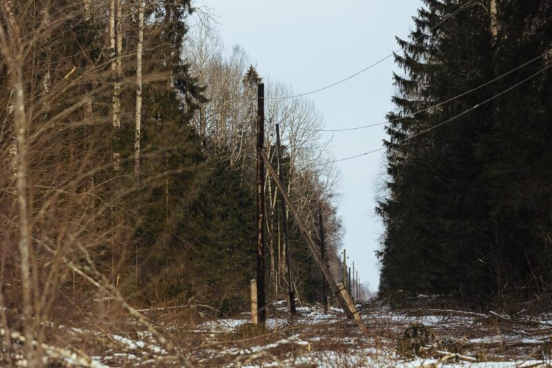 Тверской филиал «Россети Центр» повышает надежность электроснабжения потребителей Лесного района электрических сетей