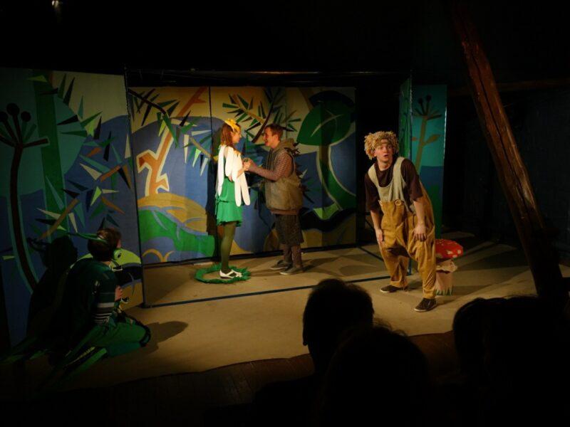 Ромашка расцветет на сцене Тверского ТЮЗа