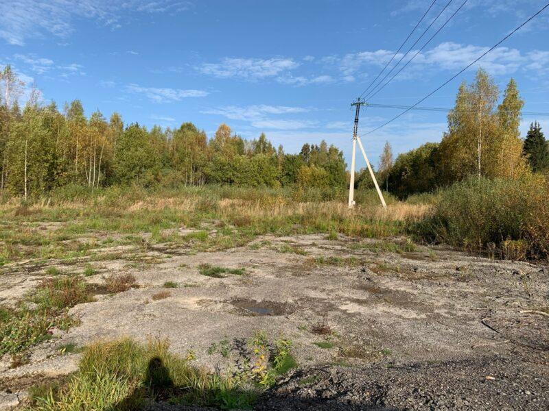 В Старицком районе должностное лицо привлекут к ответственности за загрязнение земель сельскохозяйственного назначения