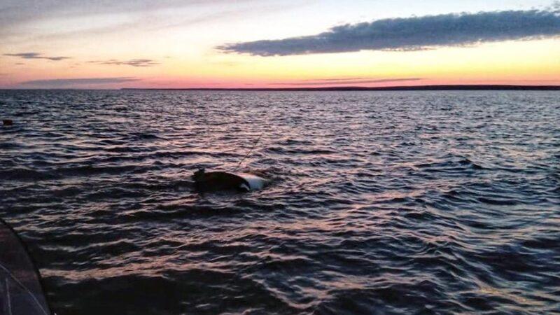 В Белом море нашли тело пропавшего тверского депутата