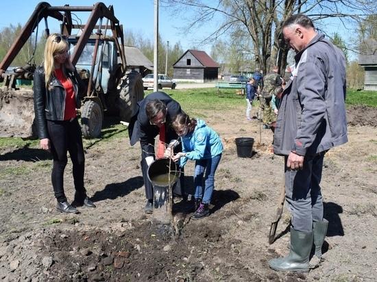 Фруктовый Сад Победы высадили в Оленинском районе