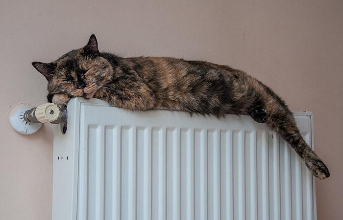10 мая в тверских домах начнут отключать отопление