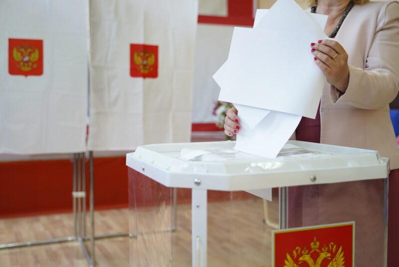 Валентина Чайковская: я отдала свой голос через интернет - это очень удобно