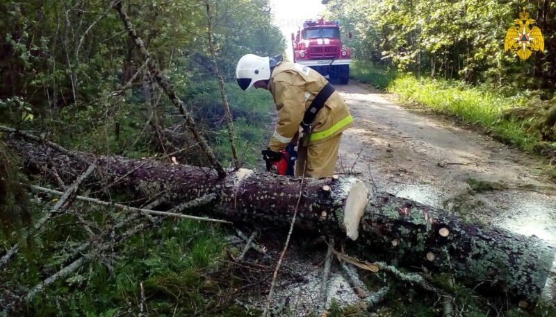 В Тверской области сотрудники МЧС убирали поваленные деревья
