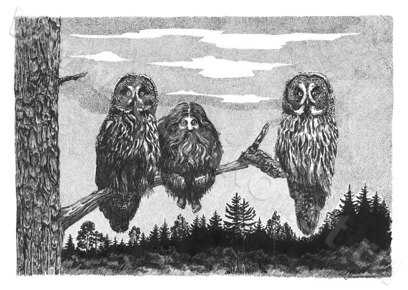 Выставка иллюстратора книг открывается в Вышнем Волочке