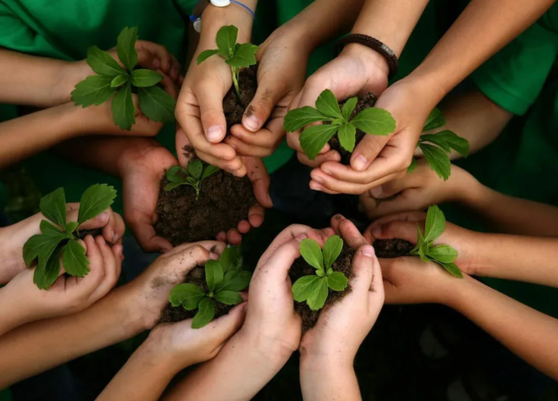 Стать соискателями международной премии Eco World приглашают жителей Тверской области