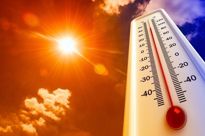 В Тверской области сохранится аномальная жара