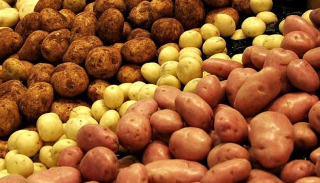 В Тверской области за неделю резко подорожали три продукта