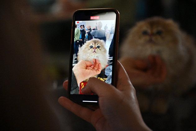 Жителей Твери приглашают на мастер-класс по мобильной фотографии