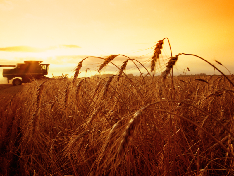 Валерий Фокеев: Вопросы по развитию сельского хозяйства не потеряли актуальности
