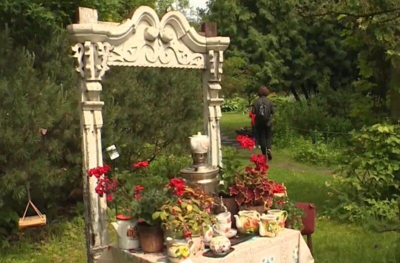 В Тверском ботаническом саду можно увидеть цветы с бабушкиного подоконника
