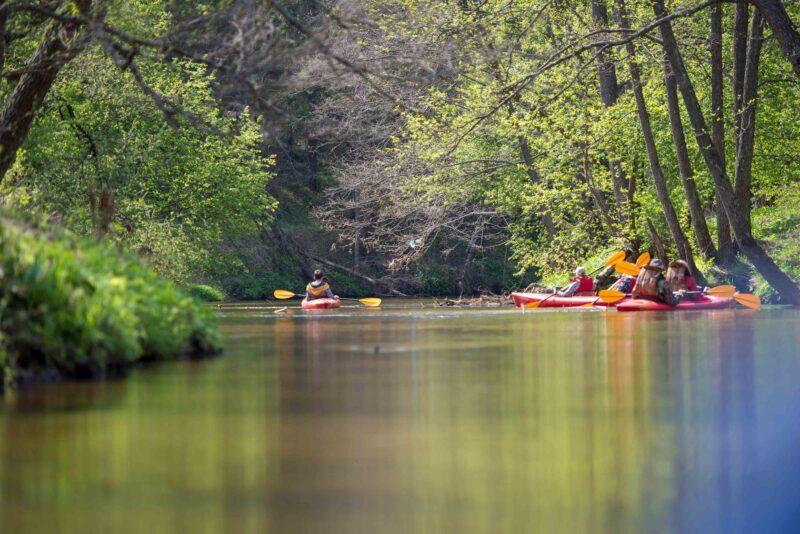 В конце июня состоится сплав по реке Медведица