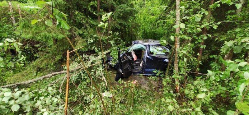 В Тверской области нашли погибшего в кювете водителя