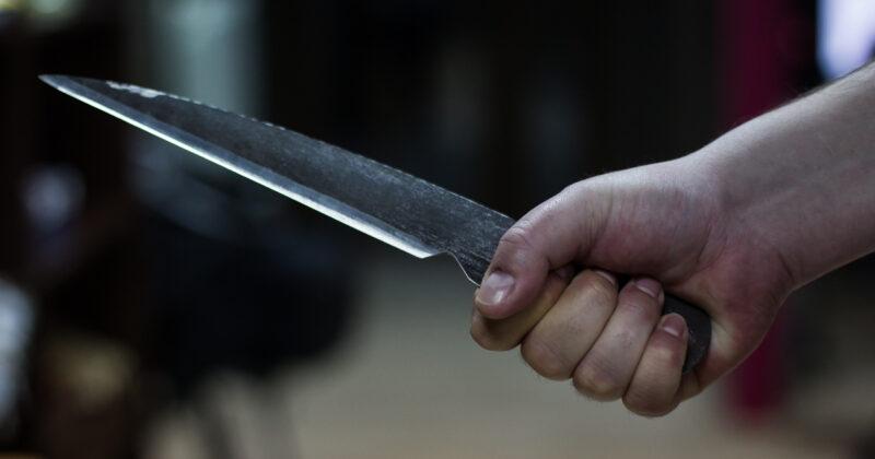 Житель Тверской области нанес удар ножом своей сожительнице