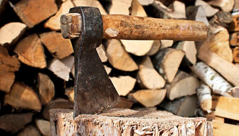 В Тверской области мужчину осудят за кражу дров