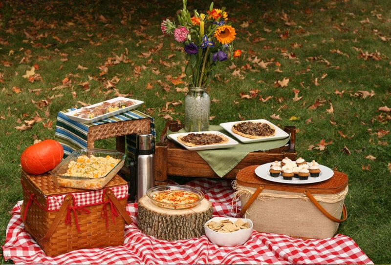 «Пикник по-английски» организуют в тверском Городском Саду