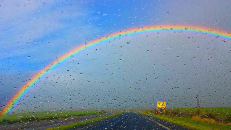 23 июля Тверскую область ждет небольшой дождь