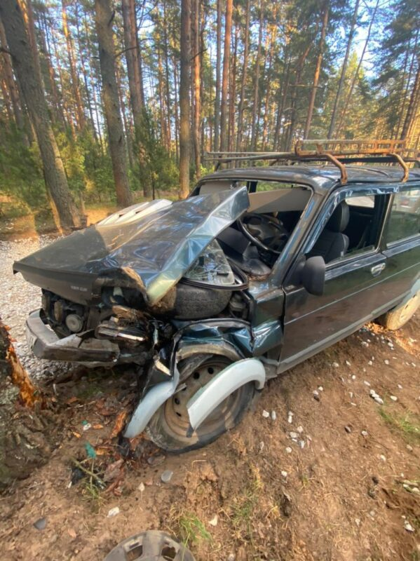 В Тверской области мужчина въехал на Ниве в дерево