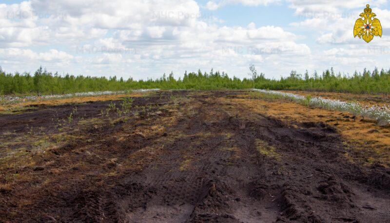 В Тверской области МЧС продолжает мониторинг торфяных месторождений