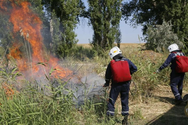 В Бологовском районе борются с ландшафтным пожаром