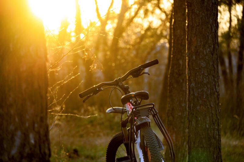 Крутой велотрип в Твери подытожит июль
