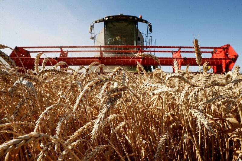 В Тверской области увеличен возраст молодых специалистов агропромышленного комплекса для получения господдержки