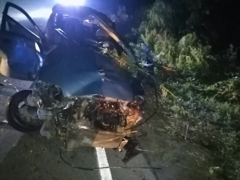 Молодой человек без водительского удостоверения погиб в ДТП в Тверской области
