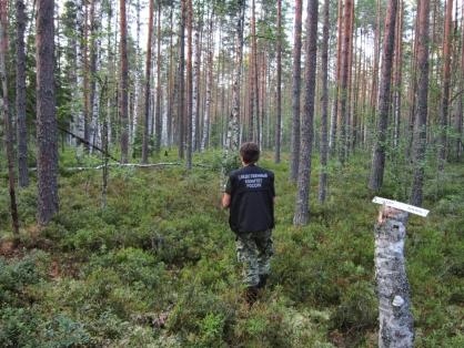 Вблизи города Тверской области обнаружили останки человека