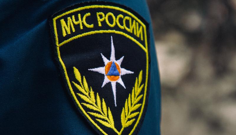 В Нелидовском округе загорелся лес рядом с населенным пунктом