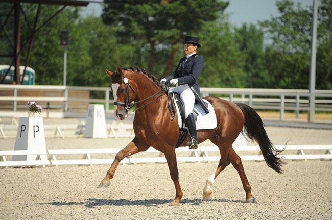 Финал Спартакиады молодежи России по конному спорту проходит в Тверской области