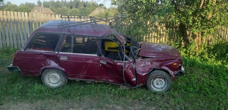 Водитель потерял управление и врезался в дерево в Тверской области