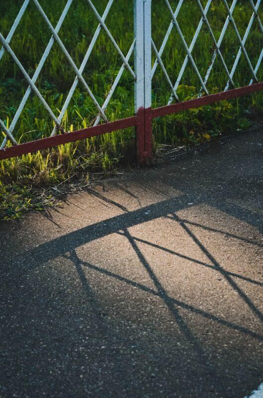Солнечная прогулка: как выглядит летняя Тверь в объективе фотоаппарата