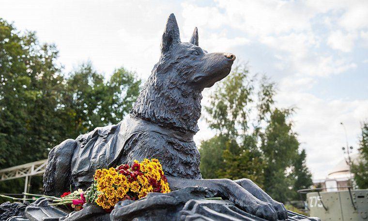 Юные жители Твери могут принять участи в конкурсе, посвященном Дню фронтовой собаки