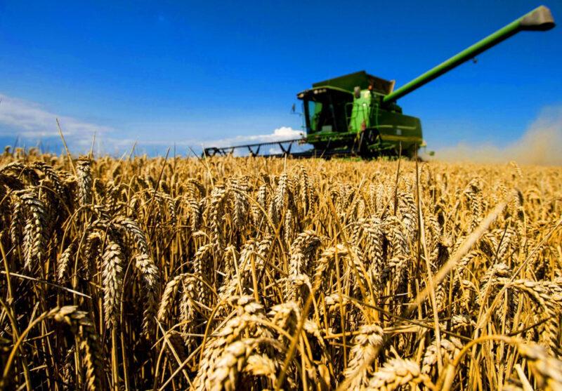 В народной программе «Единой России» появится раздел о новой аграрной политике