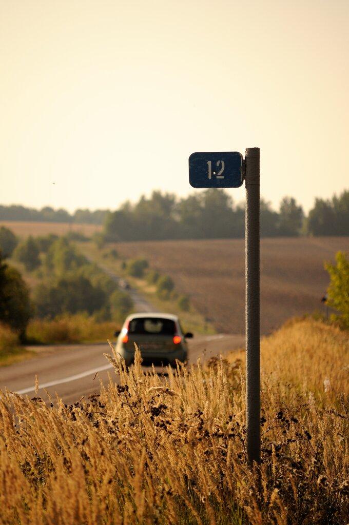 В Тверской области нетрезвый водитель врезался в столб