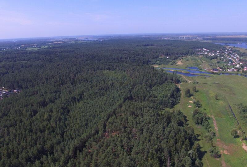 В Тверской области за состоянием лесов следят больше 250 патрулей