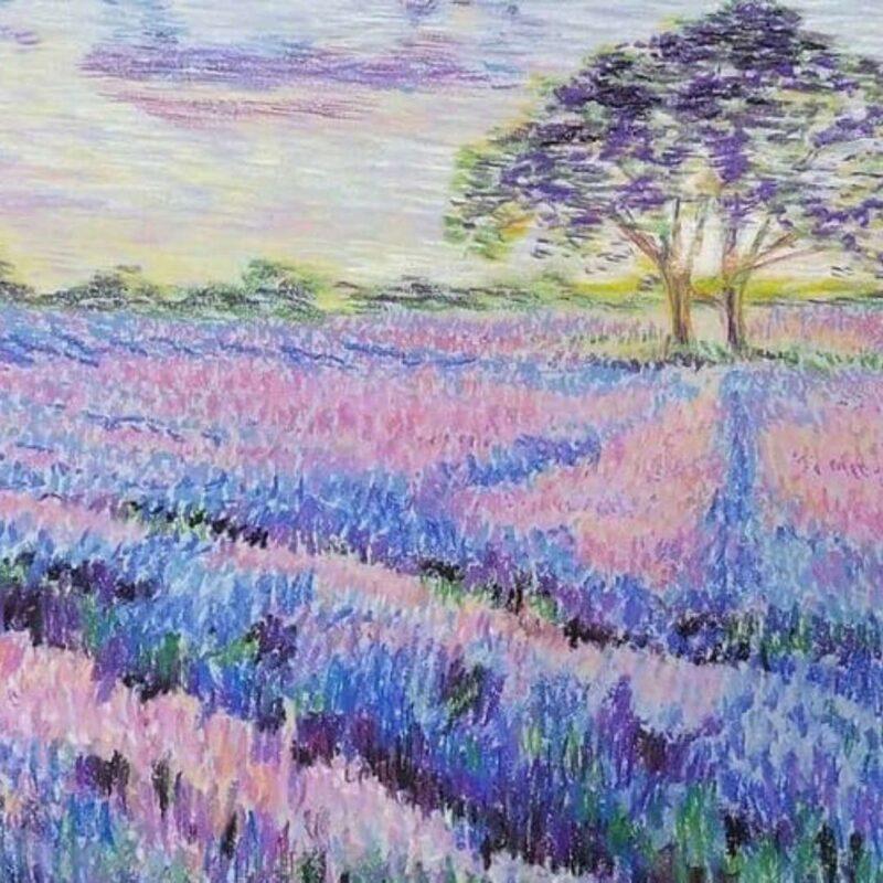 Тверской художник Николай Илюшин научит рисовать пейзажи